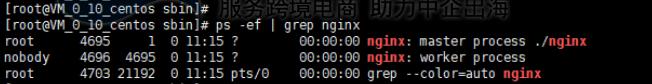 查看Nginx进程