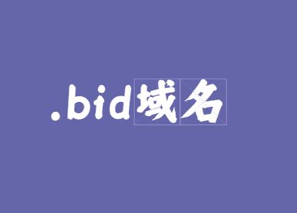 bid域名