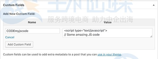 WordPress网站添加JavaScript