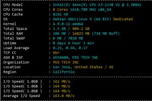 RAKsmart CN2 GIA服务器CPU和I/O读写