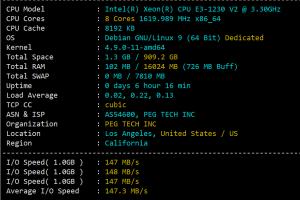 RAKsmart美国CN2 GIA服务器性能
