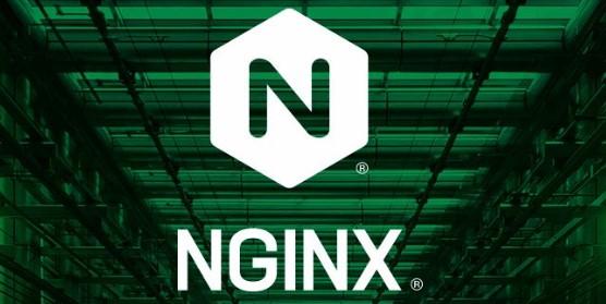 Nginx修改默认配置文件路径