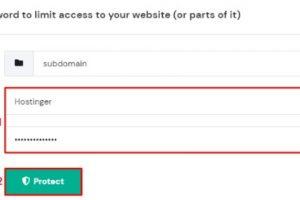 网站设置密码保护