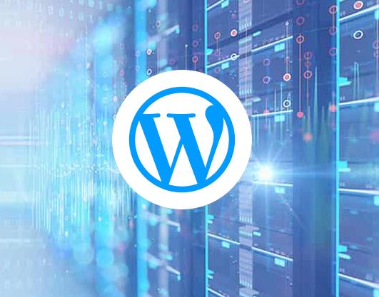 IOZoom WordPress VPS主机