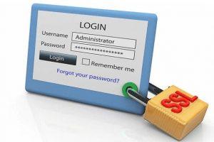 Digicert FLEX系列SSL证书