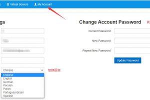 RAKsmart VPS控制面板更改语言选项