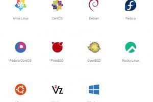 Vultr VPS服务器操作系统