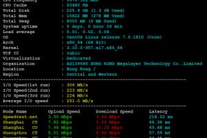 Megalayer新加坡服务器评测